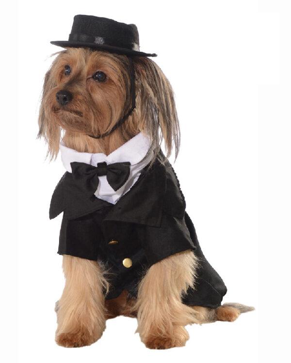 dapper suit pet big dog costume sunbury costumes