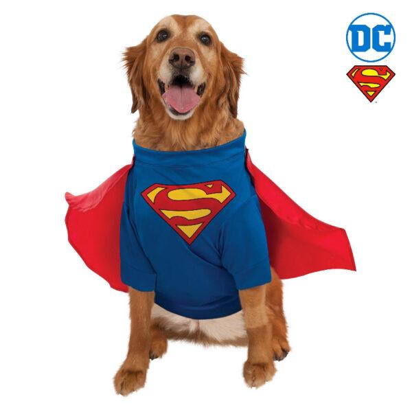 superman pet costume shirt sunbury costumes