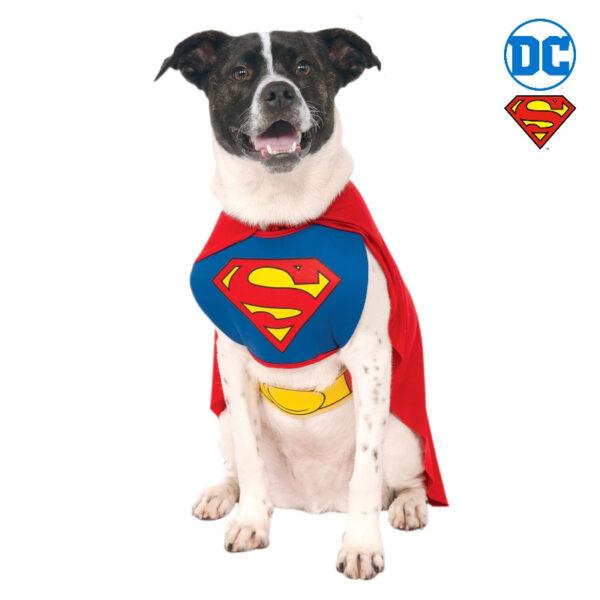 superman caped pet dog costume sunbury costumes