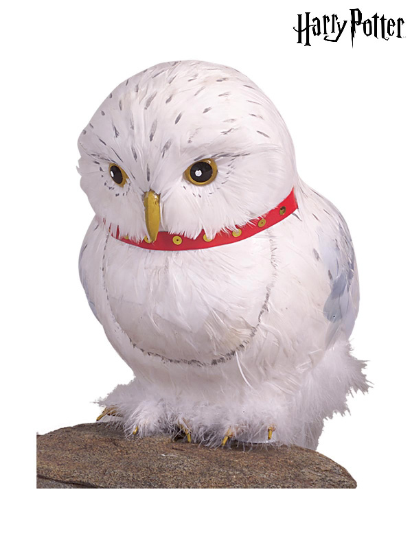 hedwig the owl prop harry potter accessories sunbury costumes